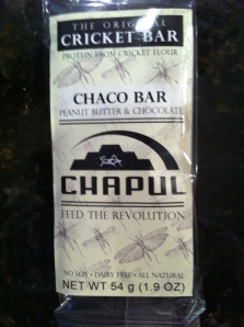 Chapul's chocolate flavored cricket bars are made with cricket flour and are a delicious way to get accustomed to insect-eating and enjoying.